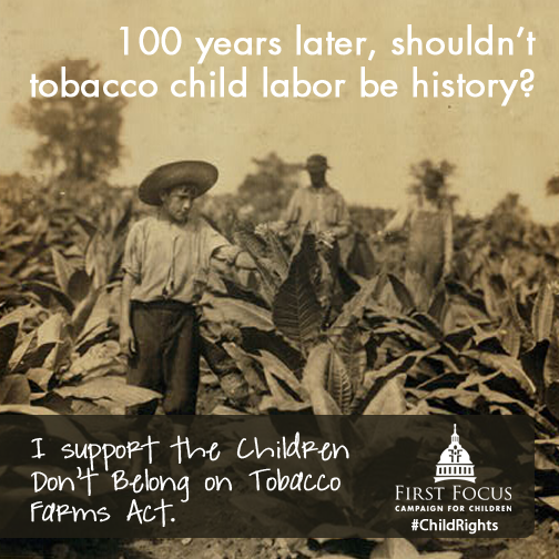 Tobacco Child Labor A