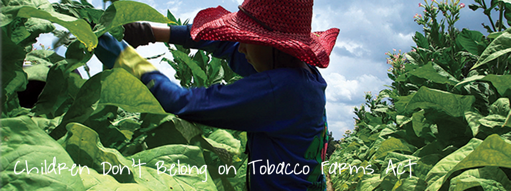 Tobacco Child Labor Action Center Template